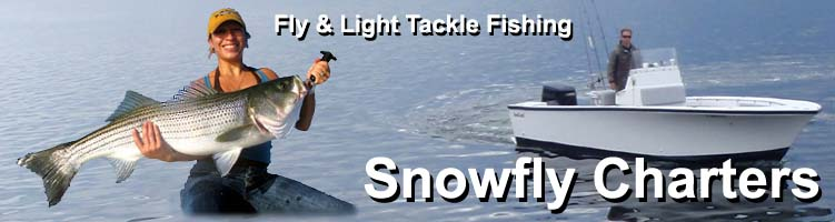 Block island fishing report from snowfly charters for Block island fishing charters